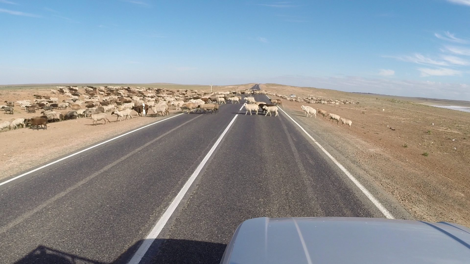Day 30: Driving Towards Kazakhstan with Expired Visa